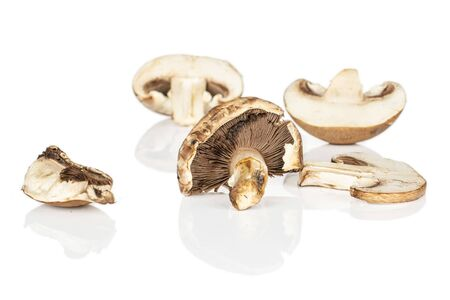 Group of one whole two halves one slice one piece of fresh brown mushroom champignon isolated on white background