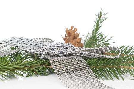 Lot of whole christmas green branch spruce with gleaming ribbon isolated on white background
