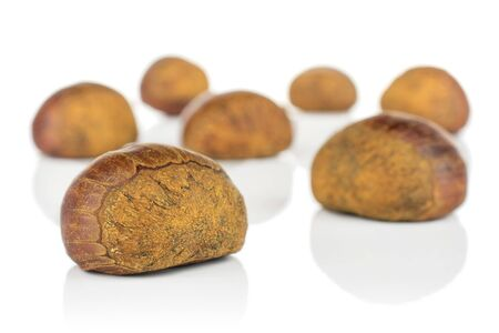 Group of seven whole sweet brown chestnut isolated on white background