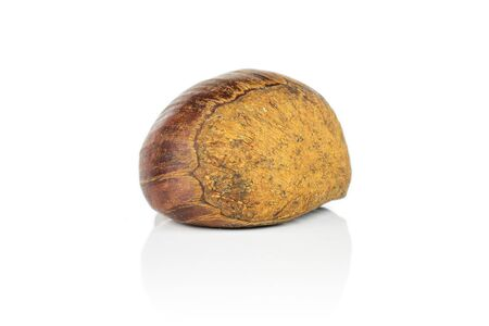 One whole sweet brown chestnut isolated on white background Stok Fotoğraf