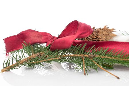 Lot of whole christmas green branch spruce with red ribbon isolated on white background