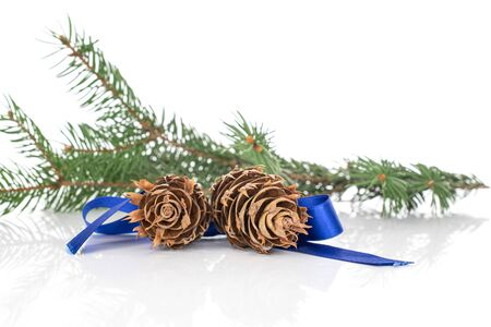 Lot of whole decorated christmas green branch spruce with blue ribbon isolated on white background Stok Fotoğraf