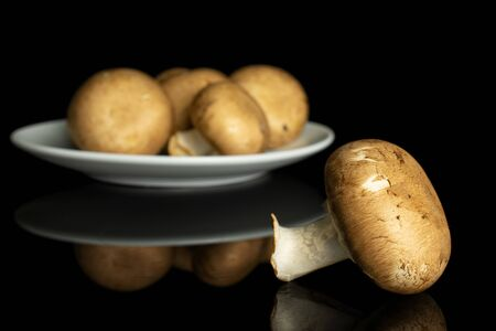 Group of five whole fresh brown champignon on white ceramic plate isolated on black glass