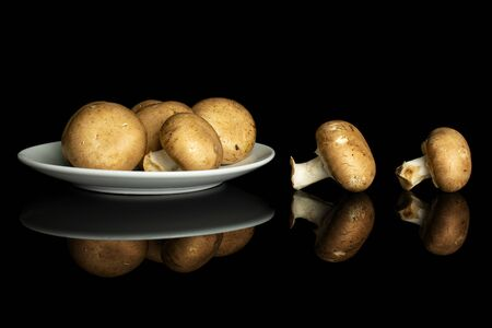 Group of six whole fresh brown champignon on white ceramic plate isolated on black glass