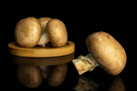 Group of four whole fresh brown champignon on bamboo coaster isolated on black glass Stock fotó