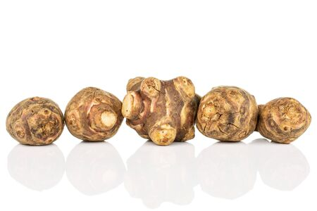 Group of five whole fresh brown jerusalem artichoke in line isolated on white background 写真素材