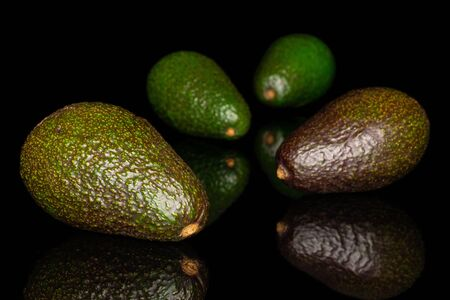 Group of four whole fresh green avocado isolated on black glass