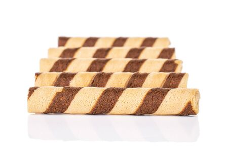 Group of five whole crunchy beige hazelnut rolled wafer biscuit isolated on white background