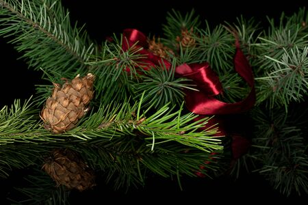 Lot of whole christmas green branch spruce with red ribbon isolated on black glass