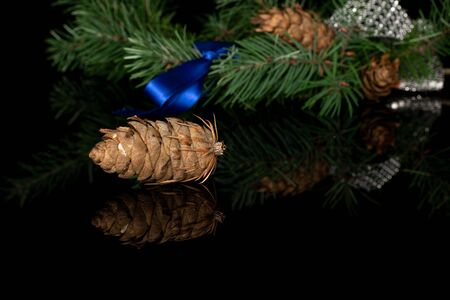 Lot of whole christmas green branch spruce with gleaming ribbon and blue ribbon isolated on black glass