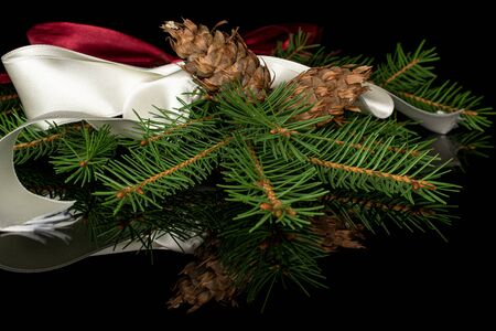 One whole christmas green branch spruce with red ribbon and white ribbon isolated on black glass