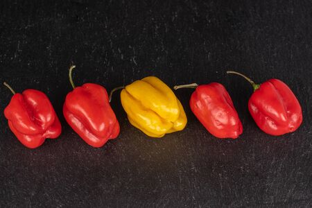 Group of five whole hot chili habanero on grey stone