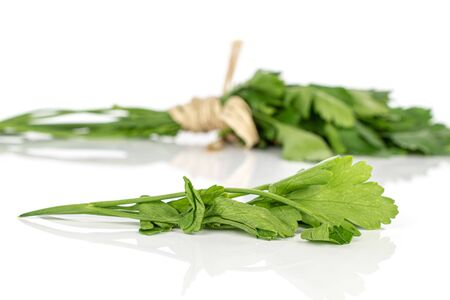Lot of whole lot of pieces of fresh green parsley with straw rope isolated on white background Banco de Imagens