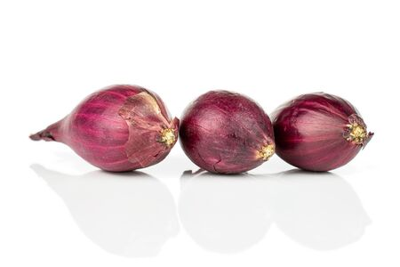 Group of three whole small red onion bulb in row isolated on white background