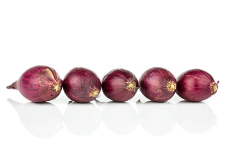 Group of five whole small red onion bulb isolated on white background Reklamní fotografie