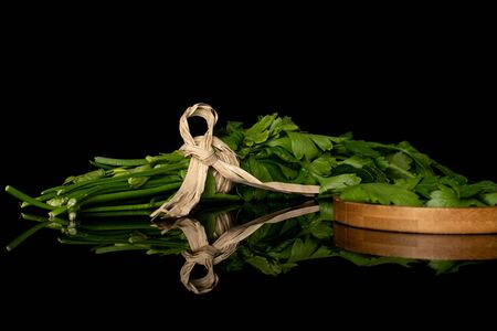 Lot of whole lot of pieces of fresh green parsley with straw rope on round bamboo coaster isolated on black glass Banco de Imagens