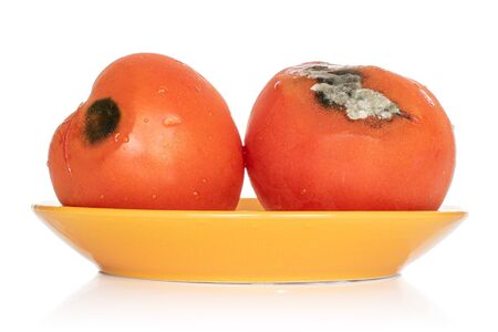 Group of two whole stale red tomato on orange plate isolated on white background