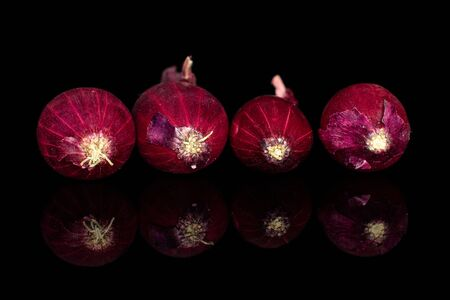 Group of four whole small red onion bulb isolated on black glass Reklamní fotografie