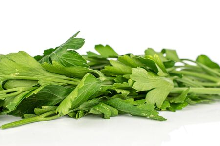 Lot of whole fresh green parsley isolated on white background