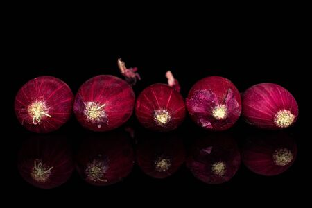 Group of five whole small red onion bulb isolated on black glass Reklamní fotografie
