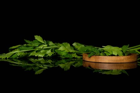 Lot of whole lot of pieces of fresh green parsley on round bamboo coaster isolated on black glass