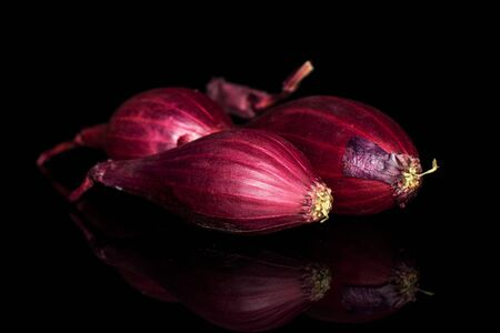 Group of three whole small red onion bulb isolated on black glass