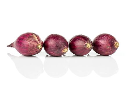 Group of four whole small red onion bulb isolated on white background Reklamní fotografie