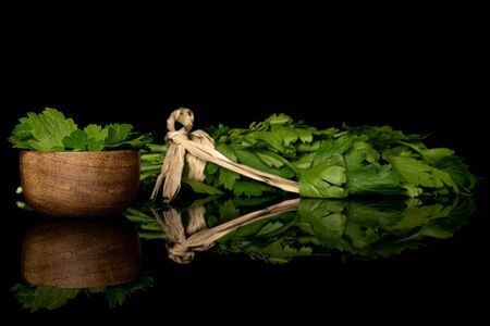 Lot of whole lot of pieces of fresh green parsley with straw rope in bamboo bowl isolated on black glass