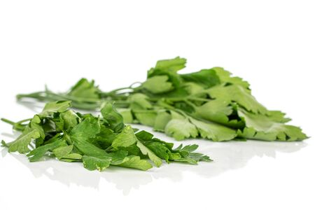Lot of whole fresh green parsley front focus isolated on white background