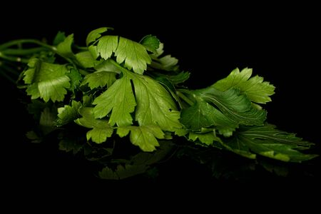 Lot of whole fresh green parsley isolated on black glass Banco de Imagens