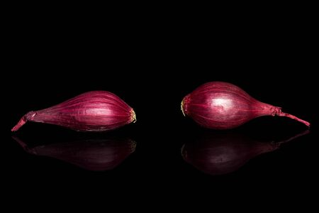 Group of two whole small red onion bulb isolated on black glass Reklamní fotografie