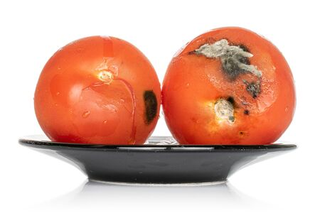 Group of two whole stale red tomato on black plate isolated on white background