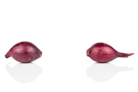 Group of two whole small red onion bulb isolated on white background