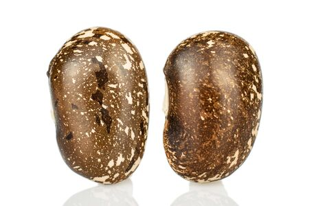 Group of two whole raw speckled brown bean pinto isolated on white background Reklamní fotografie