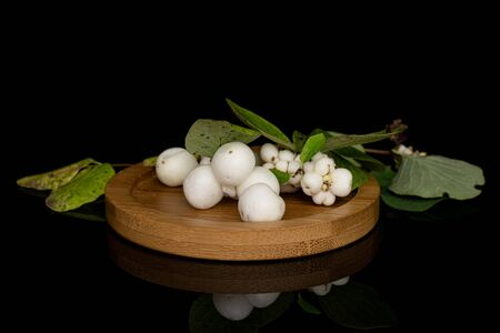 Lot of whole white snowberry with leaves on round bamboo coaster isolated on black glass