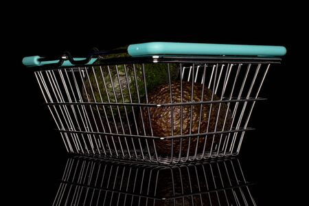 Group of two whole fresh green avocado in shopping basket isolated on black glass 免版税图像