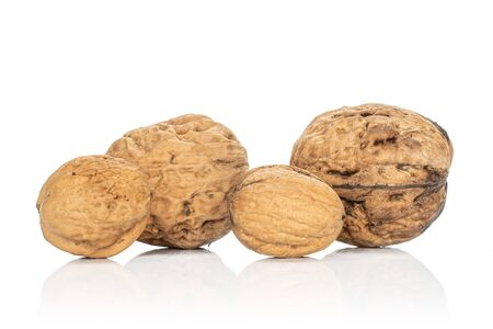 Group of four whole fresh brown walnut isolated on white background