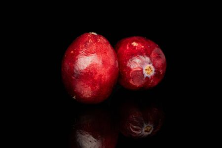 Group of two whole fresh red cranberry isolated on black glass Reklamní fotografie