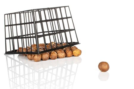 Lot of whole tasty brown hazelnut front focus in black plastic basket isolated on white background