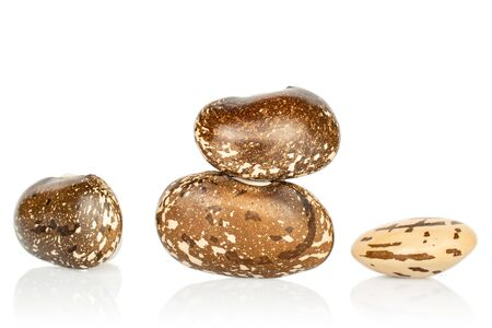 Group of four whole dried speckled brown bean pinto isolated on white background
