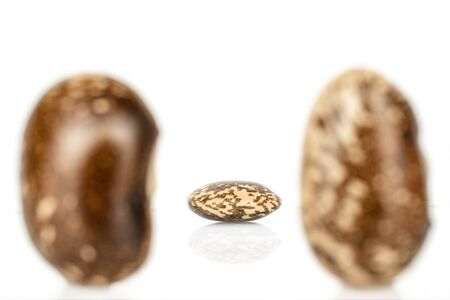 Group of three whole speckled brown bean pinto back focus isolated on white background