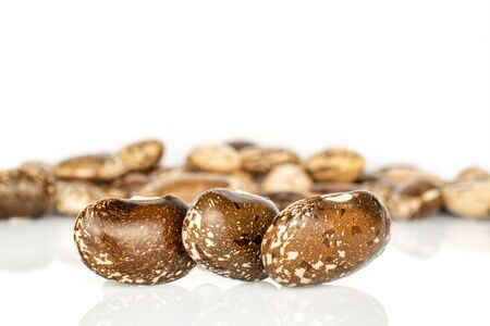 Lot of whole dried speckled brown bean pinto isolated on white background