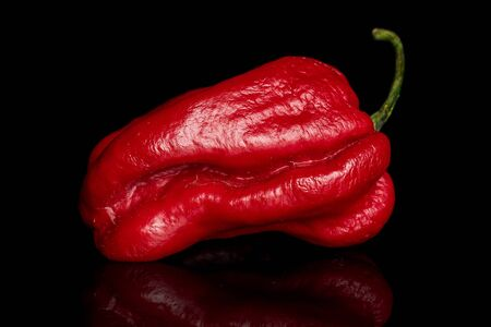 One whole red hot chili pepper isolated on black glass
