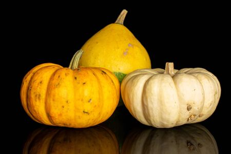 Group of three whole beautiful decorative gourd isolated on black glass