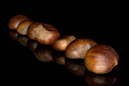Group of seven whole edible brown chestnut isolated on black glass Reklamní fotografie