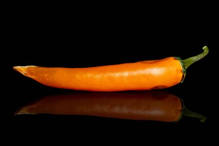 One whole orange hot chili pepper isolated on black glass Reklamní fotografie
