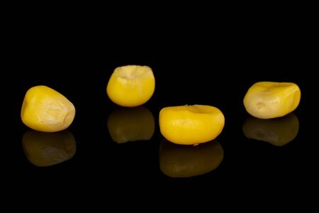 Group of four pieces of canned yellow corn isolated on black glass Imagens