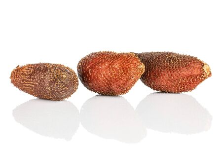Group of three whole exotic brown salak isolated on white background