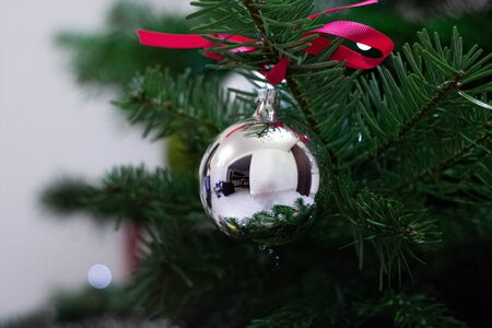 Christmas silver ball on evergreen tree close-up 版權商用圖片
