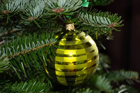 Christmas decoration green glass hanging ball on a branch 写真素材